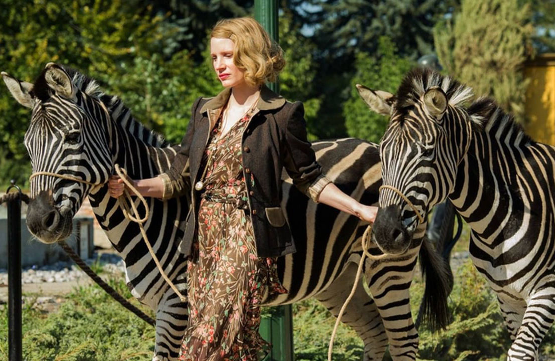 chastain with two zebras