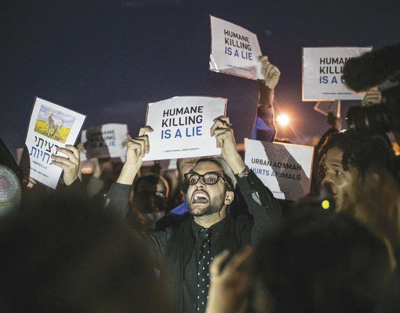 """a crowd of protesters holding signs like """"humane killing is a lie"""""""