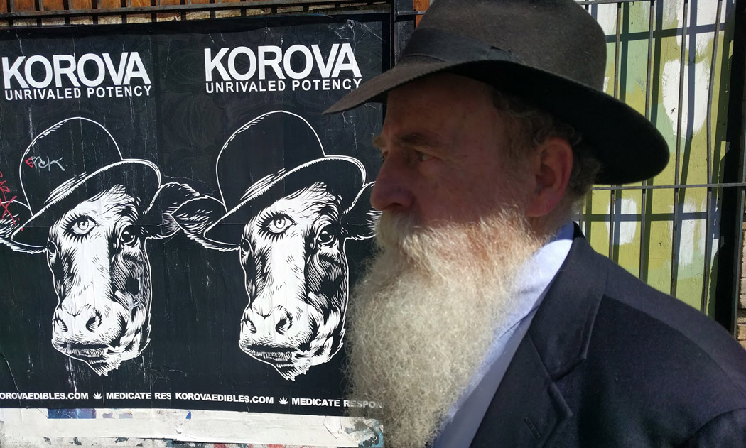 Langer has a long beard and a black hat. The ads feature drawings of a cow with a third eye wearing a bowler hat.