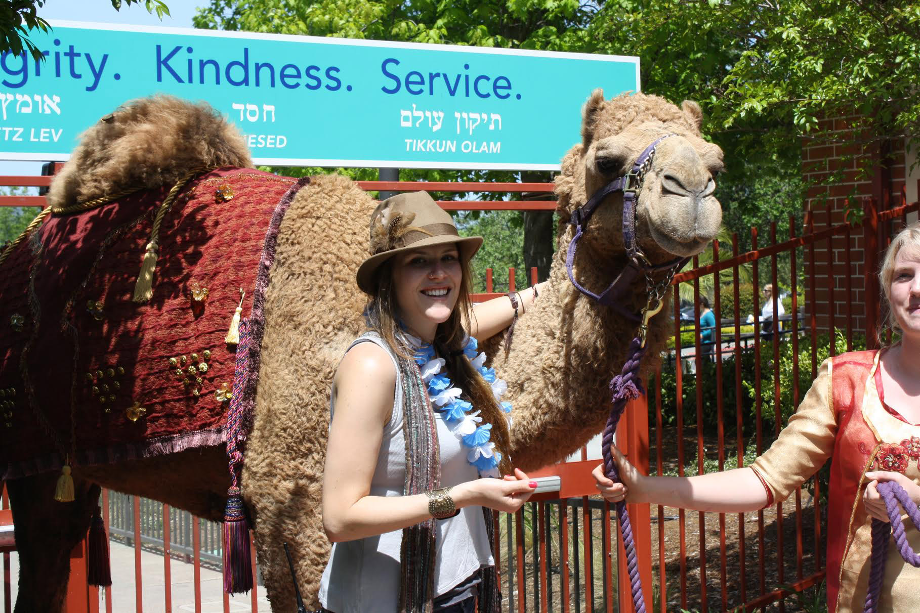 a woman stands with an honest-to-God camel in the sunshine