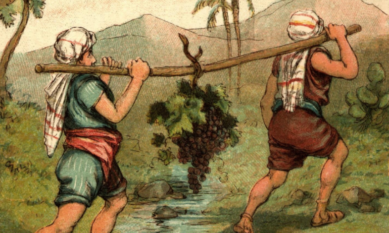 a colorful illustration of two men hefting a large branch with a large bunch of grapes on it