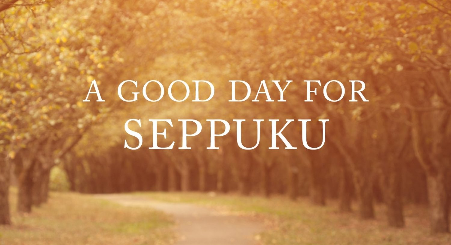 "From the cover of ""A Good Day for Seppuku"" by Kate Braverman"