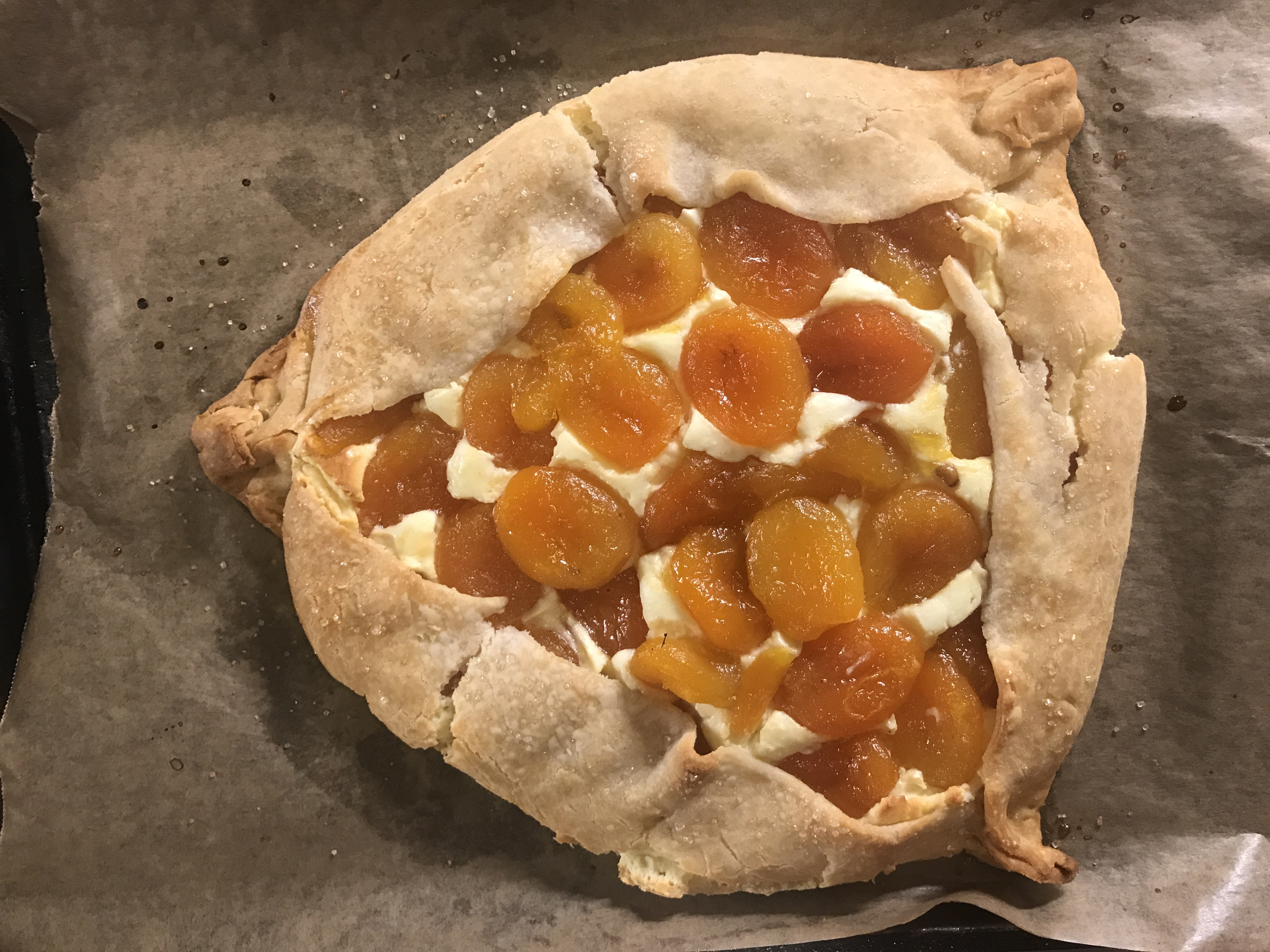 Faith Kramer's Rustic Hamantaschen Tart with Apricots and Goat Cheese Cheesecake Filling (Photo/Faith Kramer)