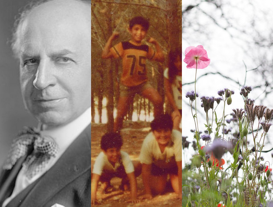 Images from winning articles by Joe Eskenazi, Yoav Potash and Shoshana Hebshi