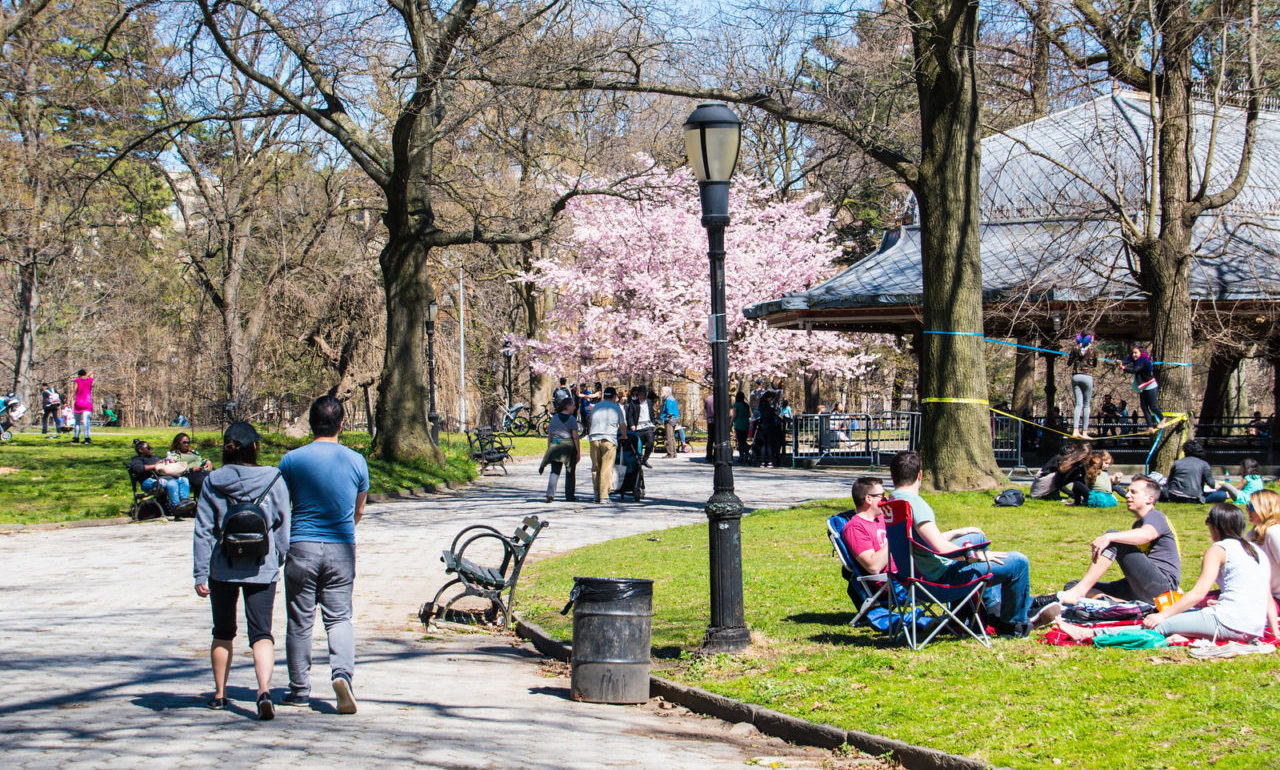 Prospect Park in Brooklyn isn't as great as Drew Himmelstein hoped. (Photo/Flickr-Maria Elkind CC BY-SA 2.0)
