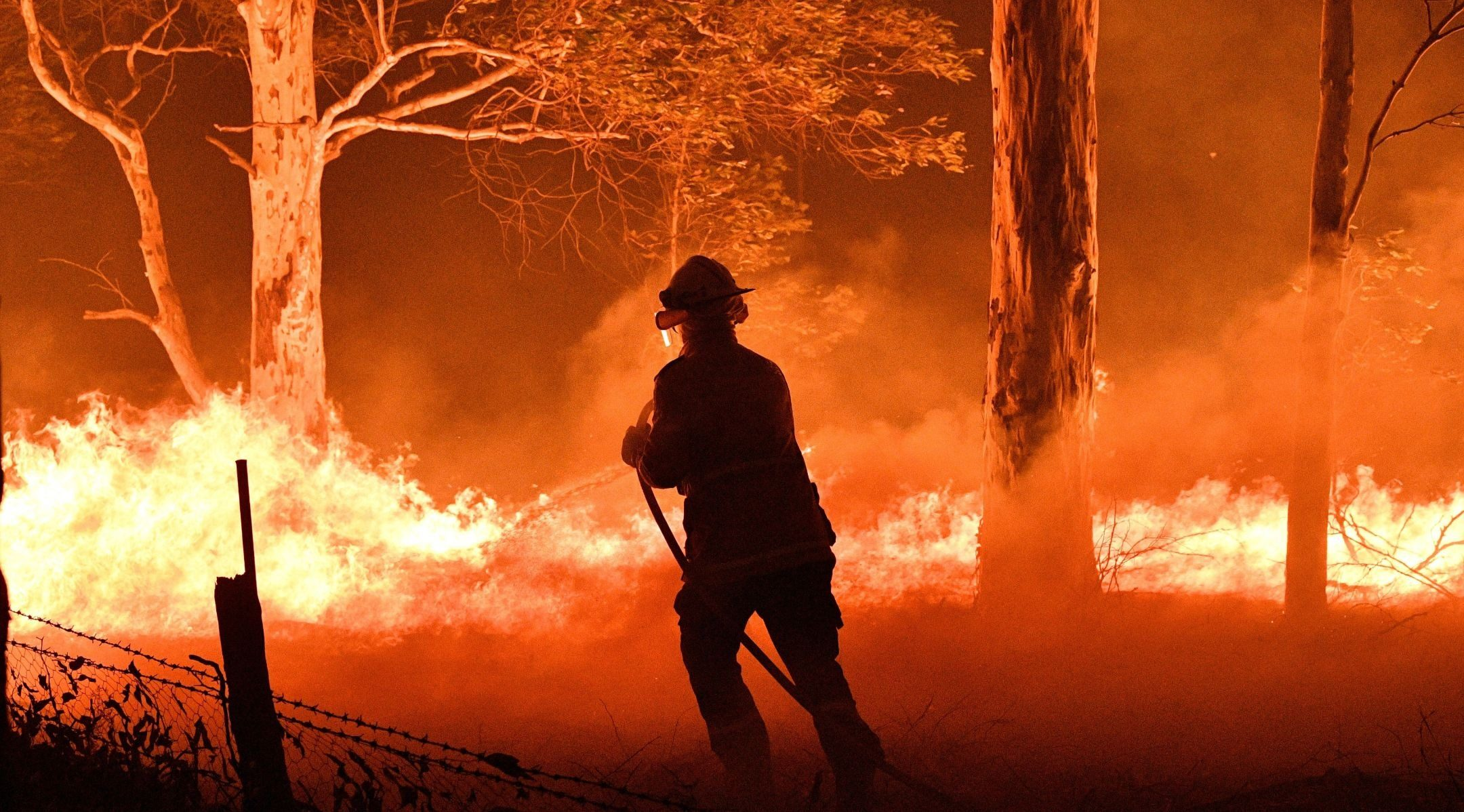 A firefighter in Australia hoses down trees to protect nearby homes from bush fires near the town of Nowra in the state of New South Wales on Dec. 31, 2019. (JTA/Saeed Kahn/AFP via Getty Images)