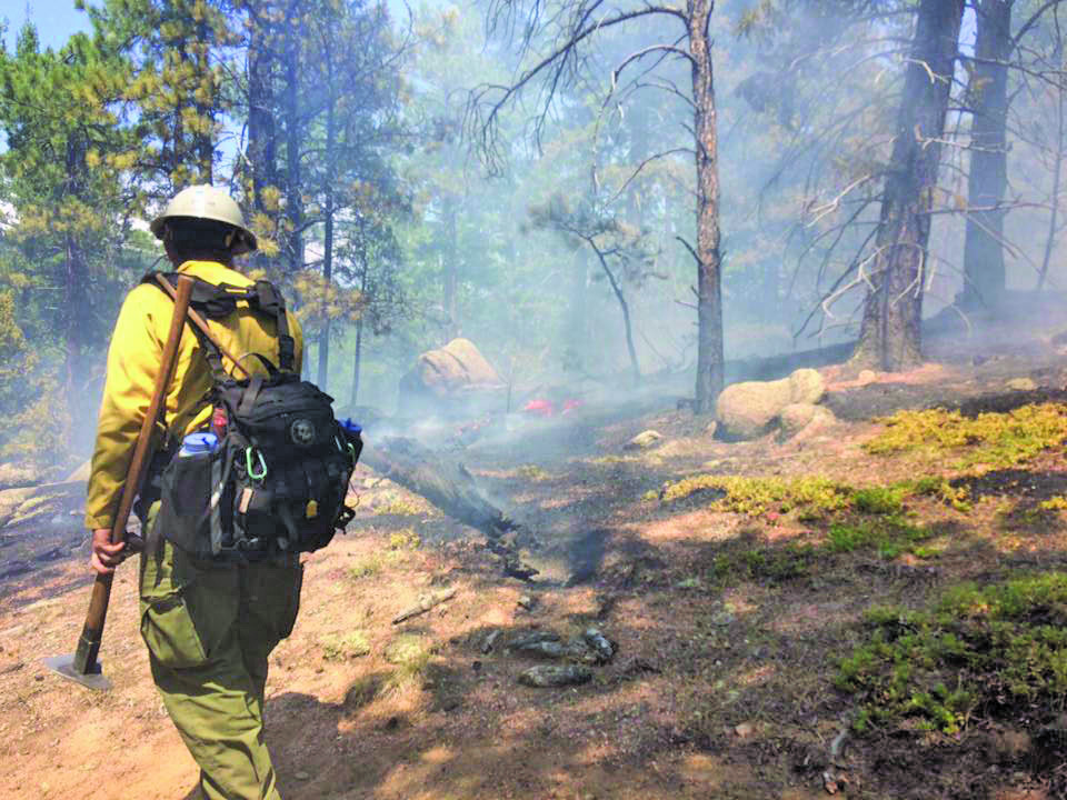 Firefighter puts out fire in a forest